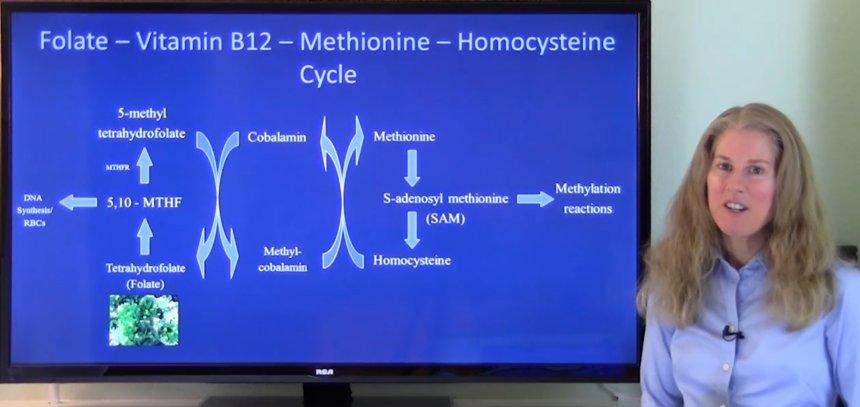 B12 folate thumbnail