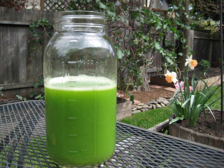 Large light green juice