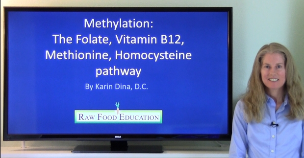 Methylation thumbnail