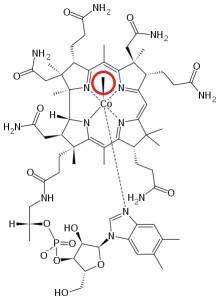 Methylcobalamin1